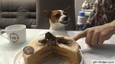 It's Hard to Stay Mad When There's Cake