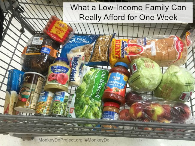 Best 25 ebt food stamps ideas on pinterest apply for ebt apply ebt food stamps buys one week ccuart Choice Image