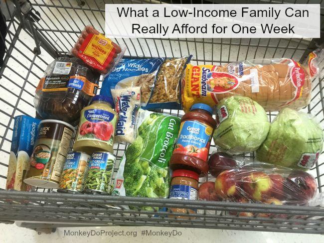 ebt food stamps buys one week