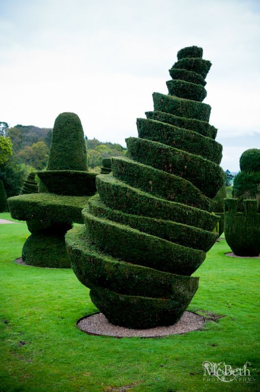 Topiary Designs Part - 43: Check Out The Crazy Topiary At Fingask Castle!