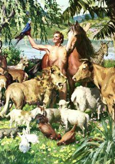 DOCTRINA Y ESTUDIOS BIBLICOS: ¿QUE LE PASO AL HUERTO DEL EDEN?