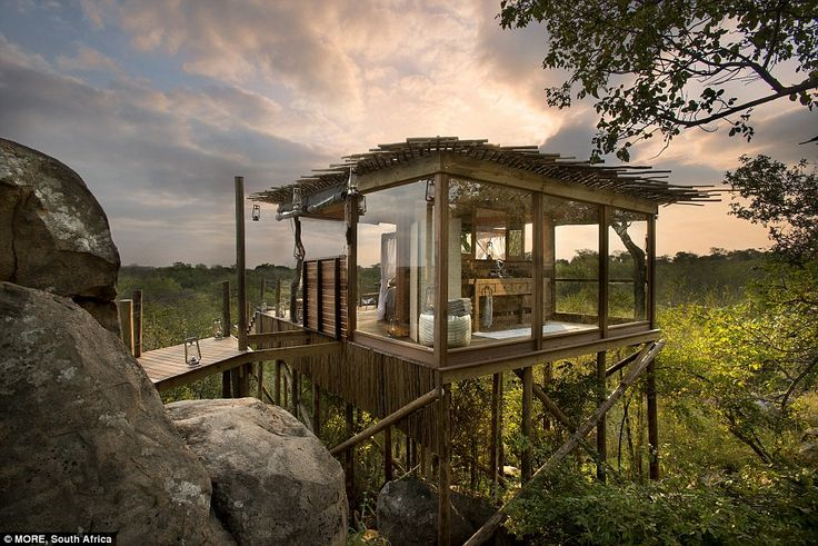 The Kingston Tree House is situated next to a magnificent rock and also has a bathroom spa...