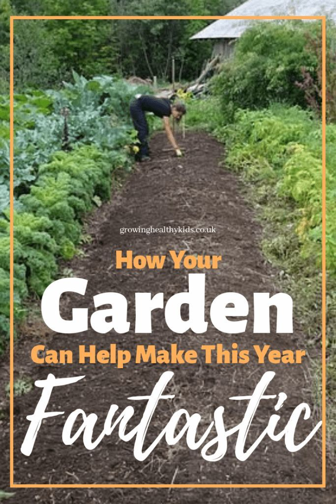 Start A Garden To Achieve Your Goals Starting A Garden