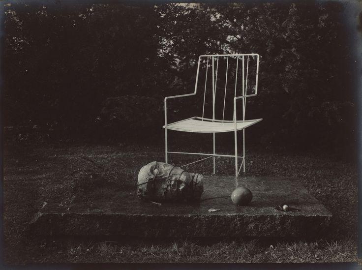 Nel giardino incantato, 1954–1959. - (Josef Sudek)