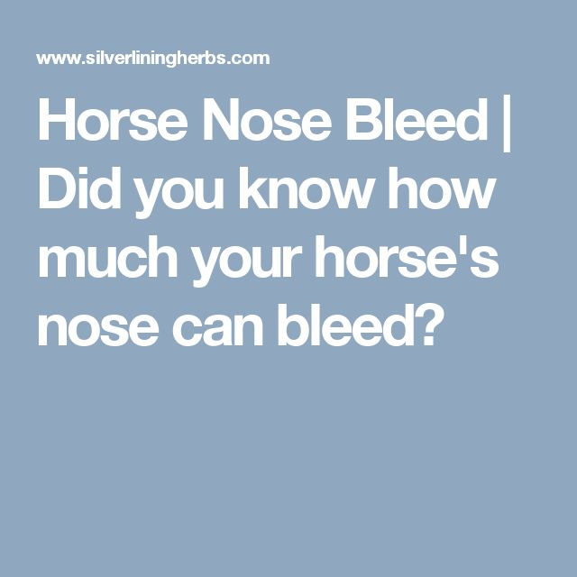 how to make your nose bleed