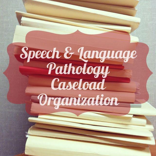Millions of Fingerprints: Today in Speech Therapy: Caseload Organization