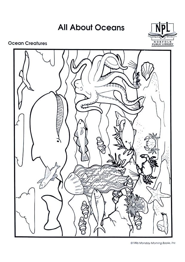 ocean life coloring pages preschool numbers - photo #28