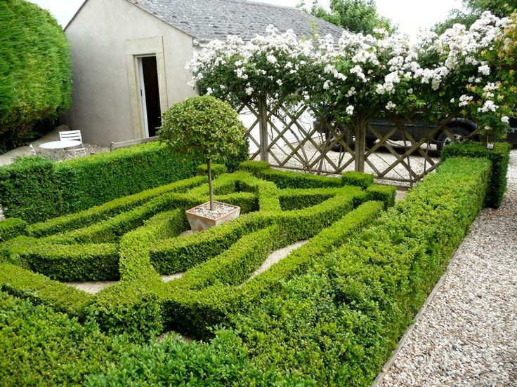 101 best Knot Gardens images on Pinterest English country gardens