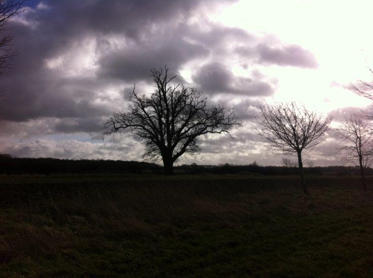 A windy wet Sunday morning