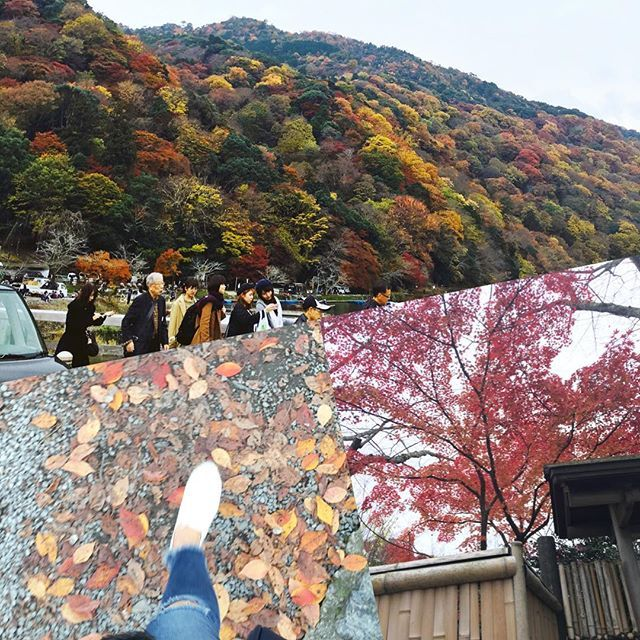 2016/11/22 12:15:28 lindenkyoto 嵐山に紅葉を見に行きました🍁京都に住んでいながら嵐山観光に来たのは初めてです、、😳人がとても多かったのですが綺麗な紅葉に癒されました💕💕 #嵐山#紅葉#京都#観光#スポット  #マツエク #マツエクデザイン #マツエクリペア #カラーエクステ #美容 #綺麗 #可愛い #女子力 #女子力up #eyelash #eyelashextension #アイメイク #烏丸マツエク #京都マツエク #ミンク #セーブル #Cカール #爪を削らない #シェラックネイル #ハイブリッドネイル #shellac #shellacnails #Linden #リンデン  #美容