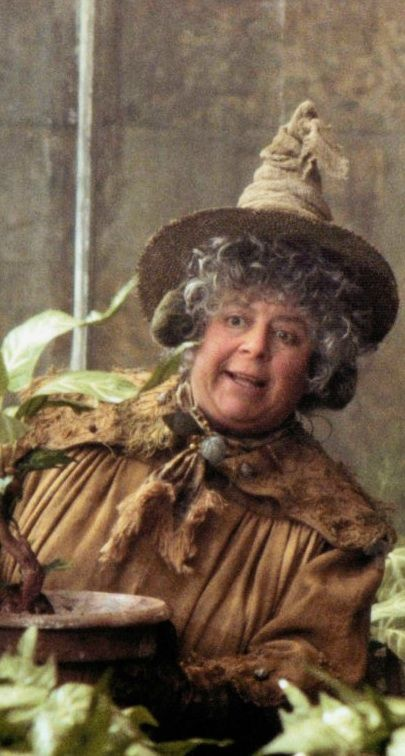 Hogwarts Professors:  Pomona Sprout from 'Harry Potter and the Chamber of Secrets' (2002) -- Costume Designer: Lindy Hemming