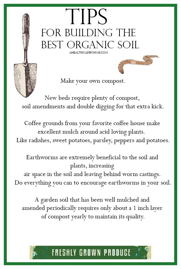 1000 images about how does your garden grow on pinterest for Organic soil meaning