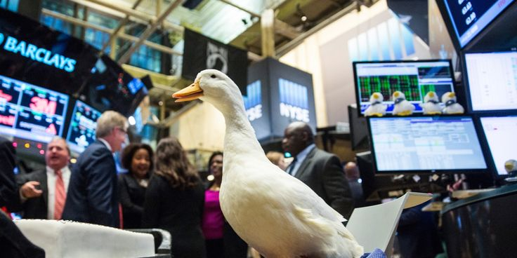 NEW YORK, NY - DECEMBER 04:  The Aflac duck visits the floor of the New York Stock Exchange after Aflac executives rang the closing bell during the afternoon of December 4, 2015 in New York City. The market closed more than 370 points up due to positive jobs report data.  (Photo by Andrew Burton/Getty Images)