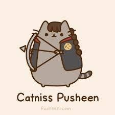 Resultado de imagen para memes de pusheen en español