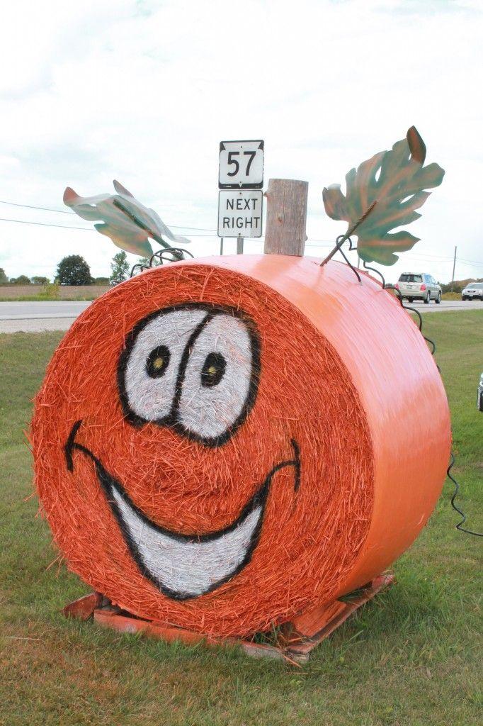 Pumpkins1 (2)