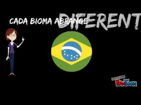 """CF 2017 - """"Biomas Brasileiros e Defesa da Vida"""""""