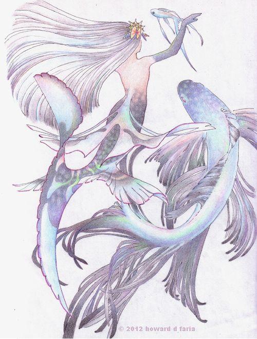 betta mermaid