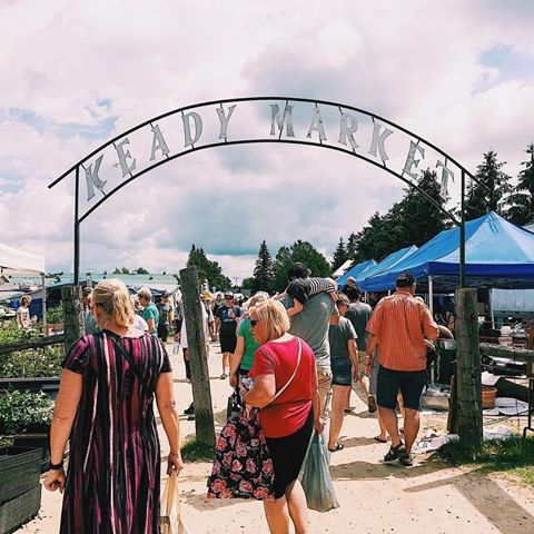 An afternoon at Keady Farmer's Market 🍅🍒🚜🍑🐷🍎🎻🥔🐮🍓🌽🍯🍿🐔
