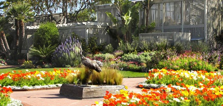 431b05abd4229cd17e51f68d467859fb  kids places garden cafe - Botanical Gardens Corona Del Mar Ca