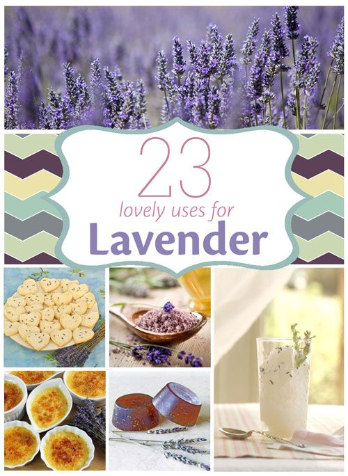 23 Uses For Lavender