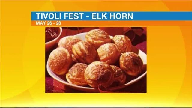 Tivoli Fest - Elk Horn Danish Celebration