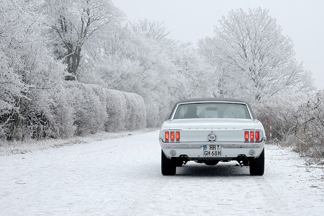 Classic mustang- white on white