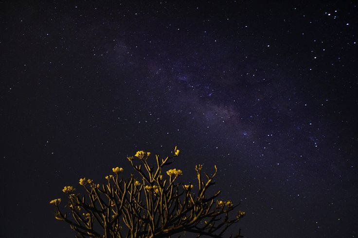 Looking up to the sky and losing yourself to the beauty of night. The starry sky and deep milkyway which tell stories of limitless life. A beauty that is missed while we fight trivial issues to survive the day.
