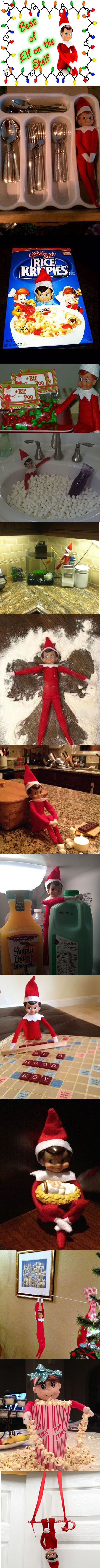 Best of Elf on the Shelf-love the fishing one. Must do!