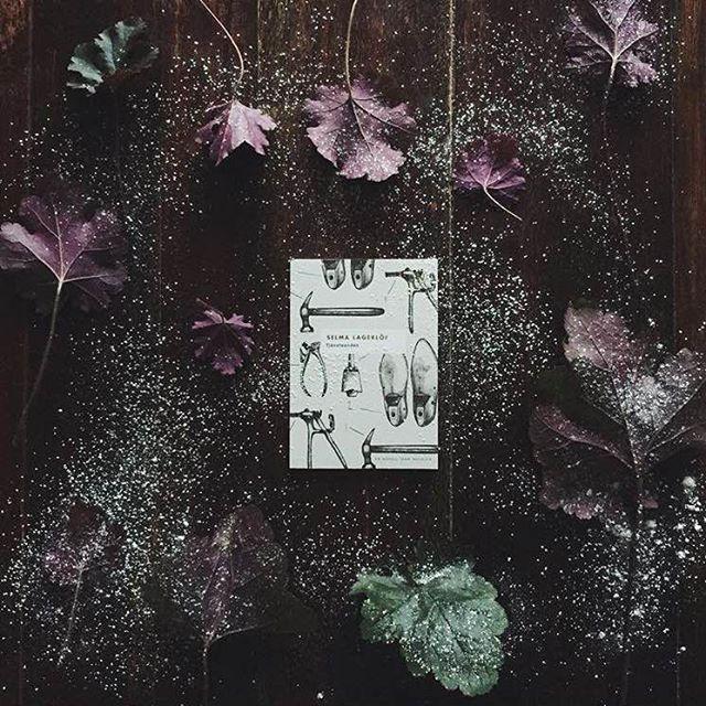 Tävling! På lördag är det Nobeldagen! Och förutom vår Nobelask så har vi ju faktiskt en hel ask med Selma Lagerlöf som fick priset 1909. Här är en av novellerna vackert fångad av @terese_k ❤️ Vad har ni för favoritförfattare som vunnit Nobelpriset? Och har ni något favoritcitat..? Fyll kommentarsfältet med ord av våra bästa författare genom tiderna så kan ni vinna en Selma Lagerlöf-ask