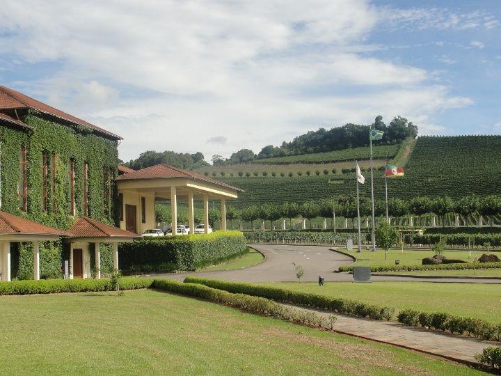 Vinícola - Bento Gonçalves - Rio Grande do Sul