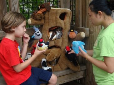 Kids learn about how trees provide shelter for animals MOBOT