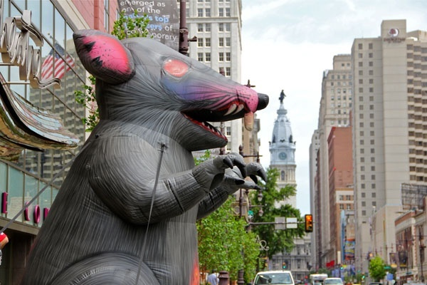 The Stagehands Union Local No. 8 put up an inflatable rat in front of the Suzanne Roberts Theatre on Broad Street to protest their lack of collective bargaining rights. (Emma Lee/for NewsWorks)