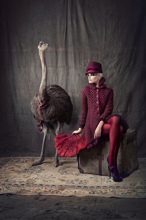 Fashion shoot with Ostrich