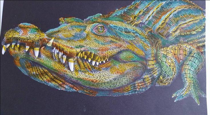 Crocodile by by Susan Lowe