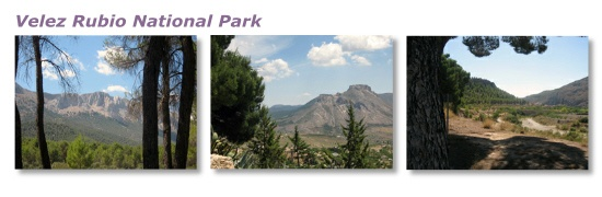We are situated in Velez Rubio which is on the edge of the magnificent Los Vélez National Park.