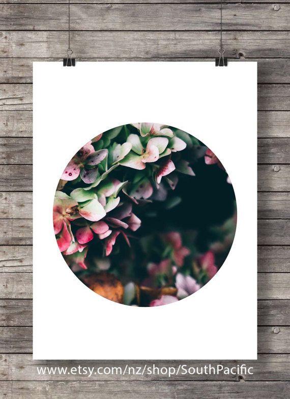 Printable art | Hydrangea flowers photo | Botanical Hydrangea | pink black white floral | photography flower art print | instant download