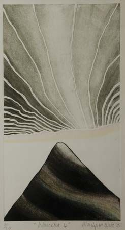 Marilyn Webb NZ Printmaker
