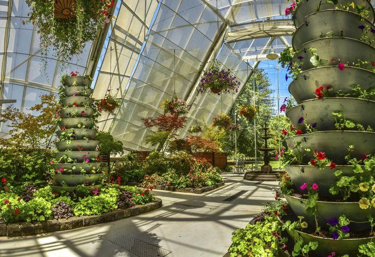 10 things we love about Ballarat. RoyalAuto April 2016. Photographer: Anne Morley  #Ballarat #BallaratBotanicGardens #Garden #Gardens #Plant #Plants #Flower #Flowers #BallaratBotanicGardensRobertClarkConservatory  #RobertClarkConservatory #Goldfields