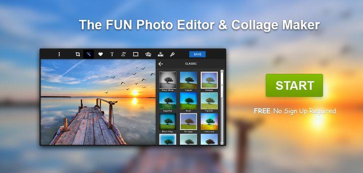 piZap | Online Photo Editor & Collage Maker | Fun Edit Effects & Images