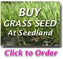 How to Plant Bermuda Grass Seed & Overseed Existing Grass - Till or No Till Methods