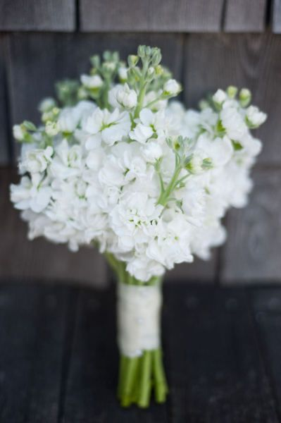 Stocks - with hydrangea blooms for bridesmaids bouquets?