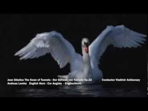 The Swan of Tuonela is an 1895 tone poem by the Finnish composer Jean Sibelius. It is part of the Lemminkäinen Suite. The tone poem is scored for a small orchestra of cor anglais, oboe, bass clarinet, two bassoons, four horns, three trombones, timpani, bass drum, harp, and divided strings. The cor anglais is the voice of the swan, and its solo is perhaps the best known cor anglais solo in the orchestral literature.