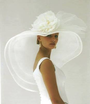 A Beautiful Wedding Hat Serving As The Vail