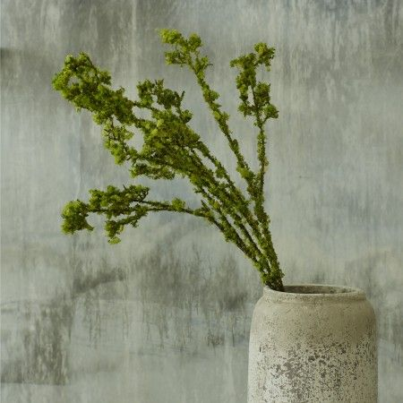 Faux Moss Spray - Botanical - Themes - New For Spring