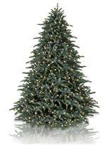 Artificial Christmas Trees On Sale, Christmas Tree Sale - Balsam Hill