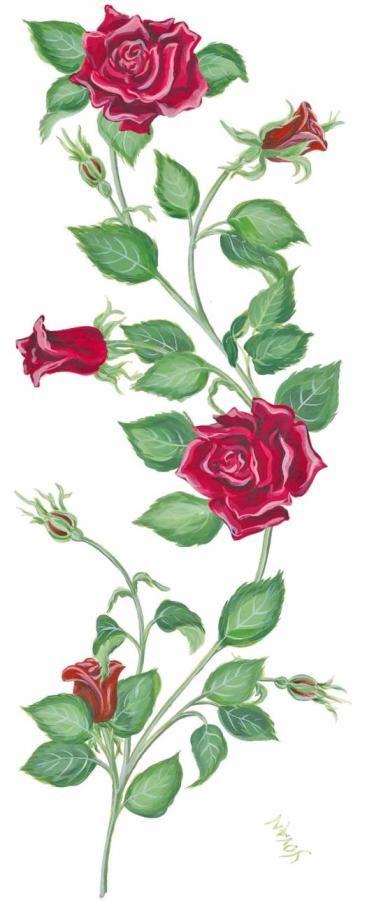 Rose design with vines