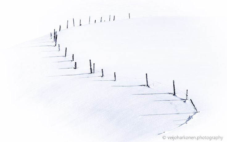 Fence of White Field