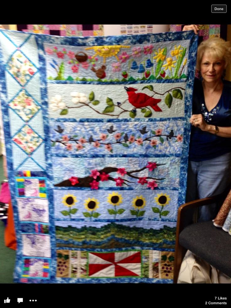 1000 Images About Quilts By Technique Row Quilts On