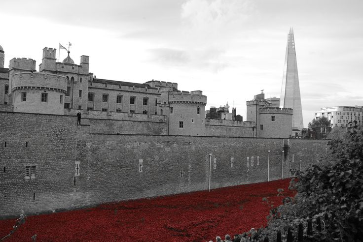 Tower of London with Poppies!