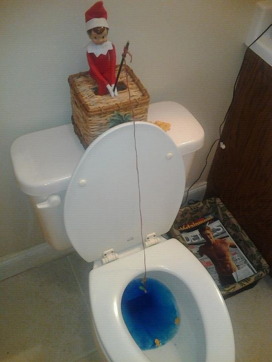 Elfred went fishing for goldfish in the toliet. He used an ornament hook and a gummy worm for bait.   @MaryEmily PardueShelf Funny, Funny Pics, Christmas Elf, Cute Ideas, Toilets, Too Funny, Ornaments Hooks, Shelf Ideas, Elves